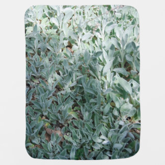 Ice Plant Baby Blankets