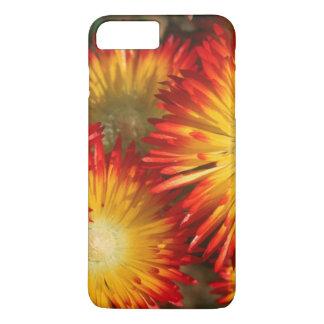 Ice Plants (Lampranthus Aureus) In Bloom iPhone 7 Plus Case