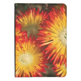 Ice Plants (Lampranthus Aureus) In Bloom Kindle Touch Cover