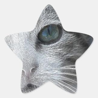 Ice Princess the Feral Feline Star Sticker