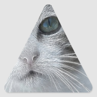 Ice Princess the Feral Feline Triangle Stickers