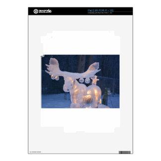 Ice Sculpture Snow Frozen Winter Seasons Weather iPad 2 Skin