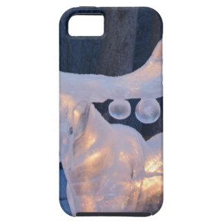 Ice Sculpture Snow Frozen Winter Seasons Weather iPhone SE/5/5s Case