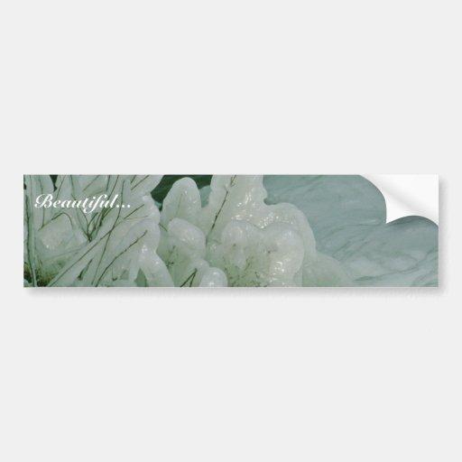 Ice Sculptures Car Bumper Sticker