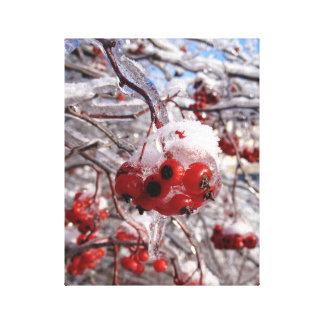 Ice Storm Berries Photo Canvas Art Print Michigan