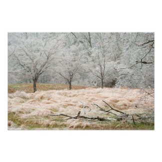 Ice Storm Rural Tennessee - Scenic Photograph Poster