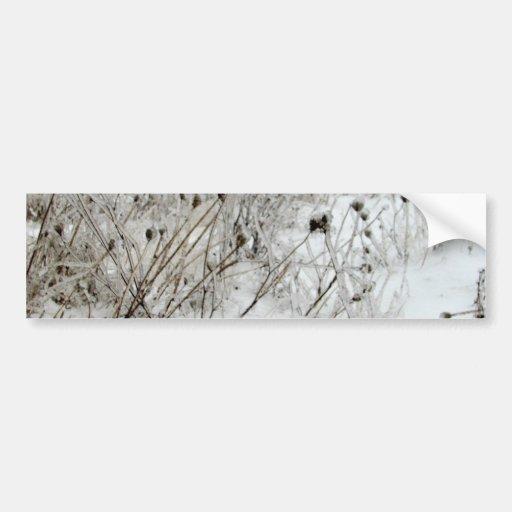 Ice Weeds Bumper Sticker