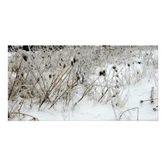 Ice Weeds Card