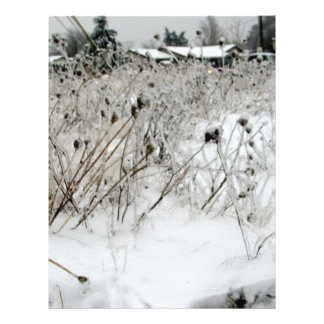 Ice Weeds Flyer