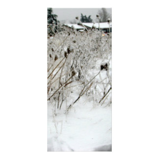 Ice Weeds Personalized Rack Card