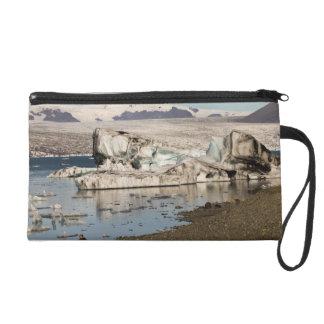 Iceberg formations 2 wristlet purse