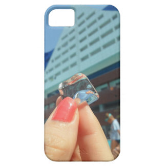 IceBerg iPhone SE/5/5s Case
