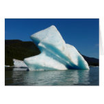 Iceberg on Mendenhall Lake in Alaska Card