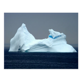 Icebergs in Newfoundland Postcard