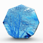 Iced Blue Tree Awards