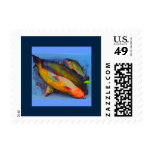 Iced Cold Fish Stamp