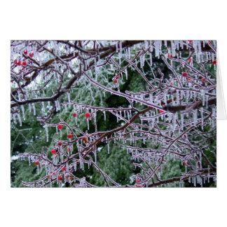 Iced Crabapple Greeting Card