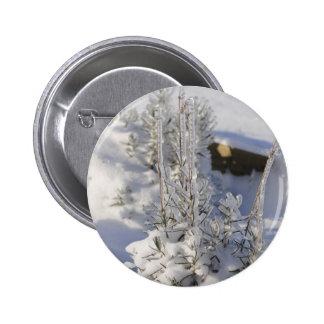 Iced fir tree with snow button
