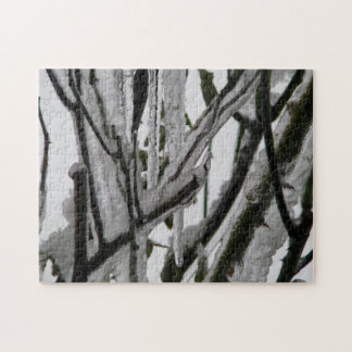 Iced Rose Branches Jigsaw Puzzles
