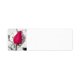 Iced Rose Label