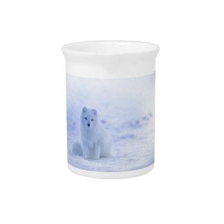 Iceland Arctic Fox Beverage Pitcher