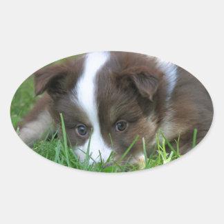 Iceland dog oval sticker