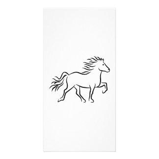 Iceland horse photo card