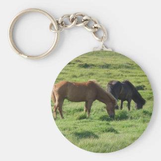 Iceland horses basic round button keychain