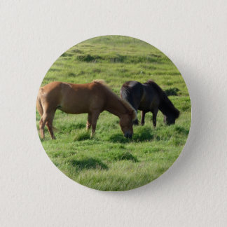 Iceland horses button