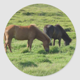 Iceland horses classic round sticker