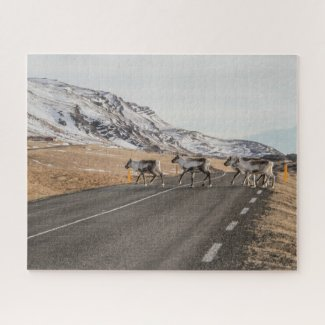 Iceland Jigsaw Puzzle - Reindeers East Fjords