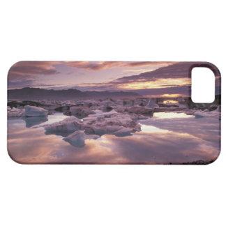 Iceland, Jokulsarlon Lagoon, Landscape iPhone SE/5/5s Case