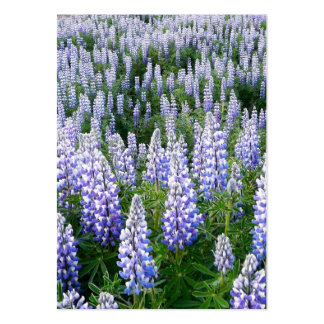 Iceland lupins bookmark business card templates