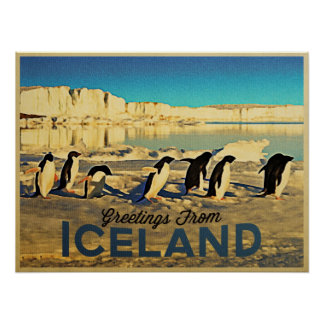 Iceland Penguins Posters