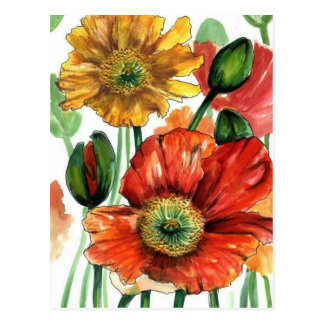 Iceland Poppies Postcard