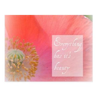 Iceland Poppy Beauty Post Card