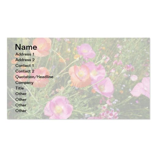 Iceland Poppy Business Card Templates