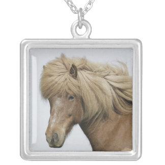 Iceland Portrait of an Icelandic horse Custom Necklace