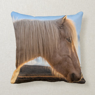 Iceland. Portrait Of Icelandic Horse Pillow