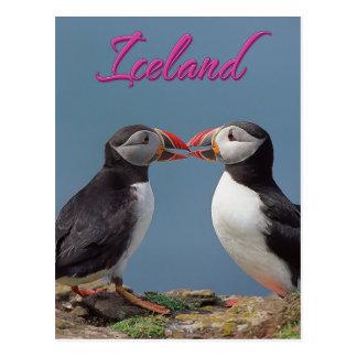 Iceland Postcard
