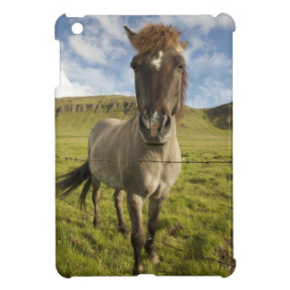 Iceland, Reykjavik. Frontal view of Icelandic Case For The iPad Mini