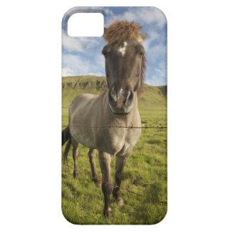 Iceland, Reykjavik. Frontal view of Icelandic iPhone SE/5/5s Case