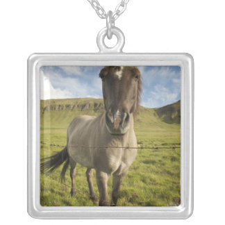 Iceland Reykjavik Frontal view of Icelandic Personalized Necklace