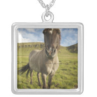Iceland, Reykjavik. Frontal view of Icelandic Personalized Necklace