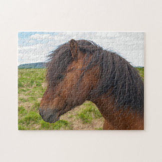 Iceland. South Region. Selfoss. Icelandic horse 1 Jigsaw Puzzle