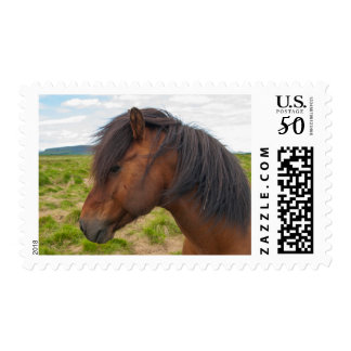 Iceland. South Region. Selfoss. Icelandic horse 1 Postage