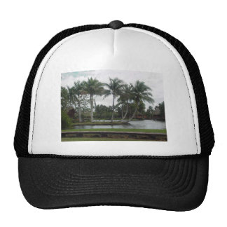 Iceland with palms trucker hat