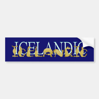 Icelandic flexible alphabet pony bumper sticker