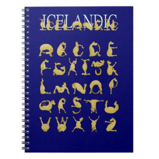 Icelandic flexible alphabet pony spiral note book
