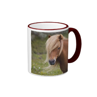 Icelandic Foal Coffee Mug